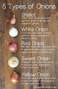 5 Types of Onions from fivelittlechefs.com #cookingschool #kidscooking #onions