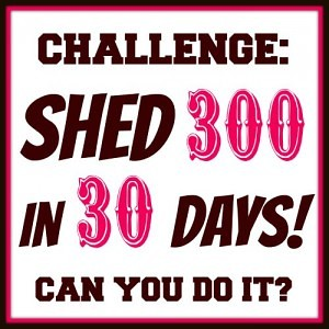 Challenge 300 in 30 Days from fivelittlechefs.com