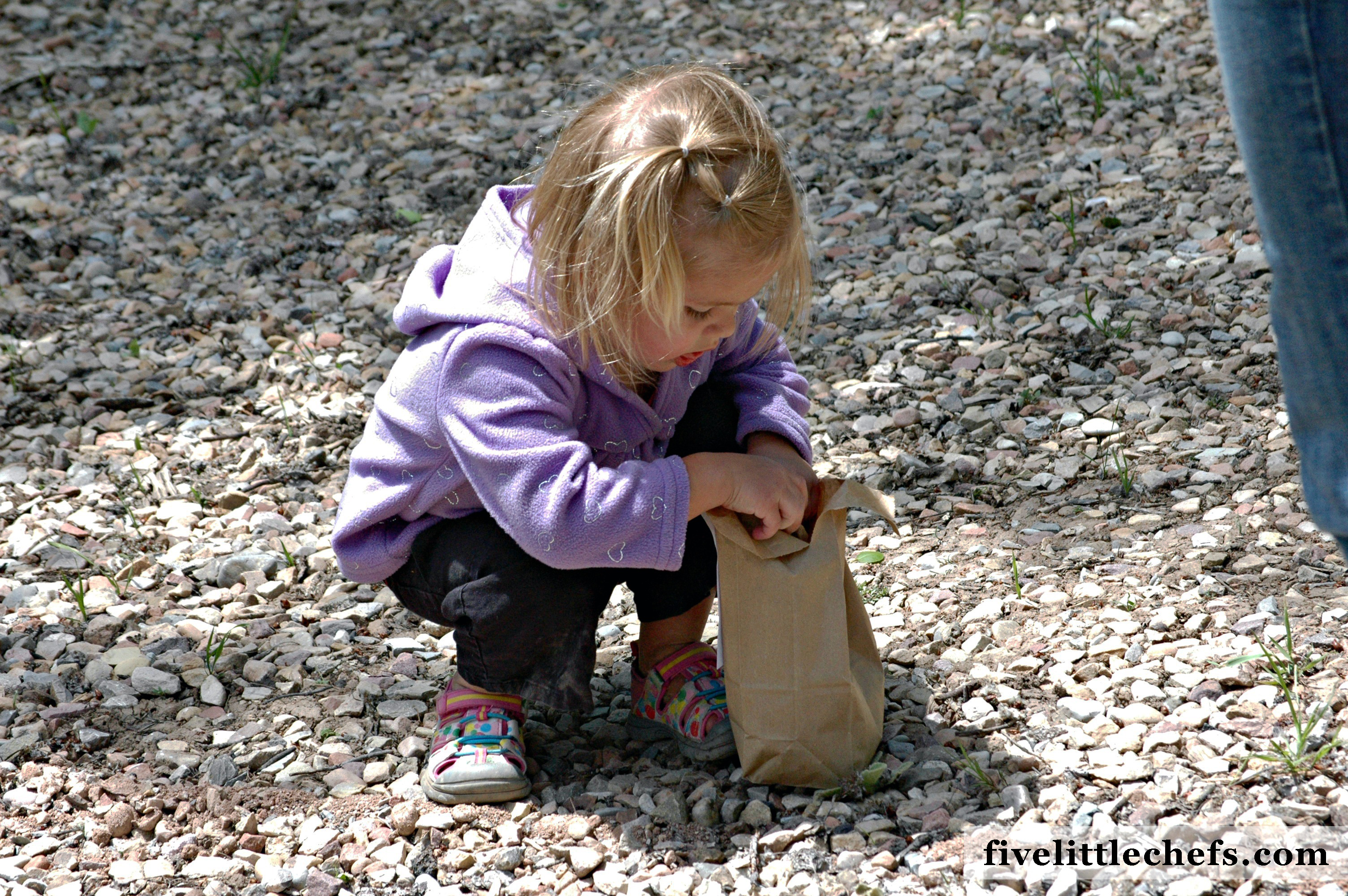 Nature Scavenger Hunt for Kids FREE Printable is a simple way to turn the outdoors into a fun adventure!