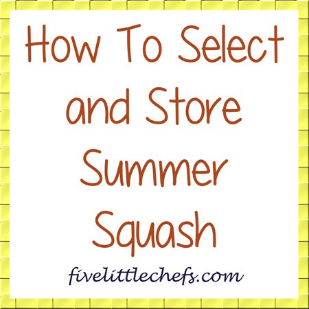 Discover how to select and store summer squash from fivelittlechefs.com #summersquash #culinaryfacts